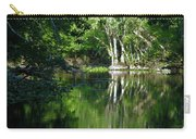 Bend Of The Ocklawaha River Carry-all Pouch