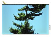 Beneath This Tree Lies Robert Edwin Peary Carry-all Pouch