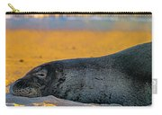 Benny At Sunset Carry-all Pouch