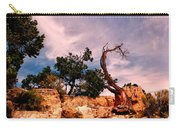 Bent The Grand Canyon Carry-all Pouch