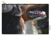 Bernese Mountain Dog Basking In The Sunshine Carry-all Pouch