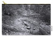 Big Basin Redwoods Sp 1 Carry-all Pouch
