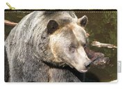 Big Bear Carry-all Pouch