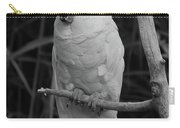 Big Bird Carry-all Pouch