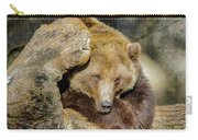 Big Brown Bear Carry-all Pouch