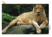 Big Cats 114 Carry-all Pouch