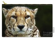 Big Cats 51 Carry-all Pouch