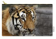 Big Cats 78 Carry-all Pouch