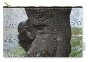 Big Foot Carry-all Pouch