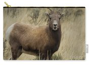 Big Horn Ewe-signed-#7480 Carry-all Pouch