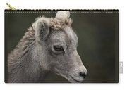 Big Horn Lamb Carry-all Pouch