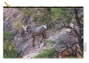 Big Horned Ram Carry-all Pouch
