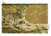 Big Kitty Cat Carry-all Pouch