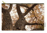 Big Tree Carry-all Pouch by James BO  Insogna