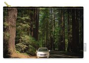 Big Tree Road Carry-all Pouch
