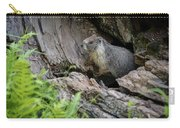 Big Tree Trail - Marmot - Sequoia National Park - California Carry-all Pouch