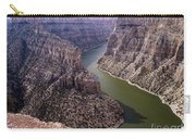 Bighorn Canyon Carry-all Pouch
