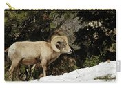 Bighorn In The Rockies Carry-all Pouch