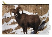 Bighorn Carry-all Pouch