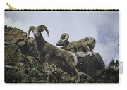 Bighorn Pair Carry-all Pouch by Jason Coward