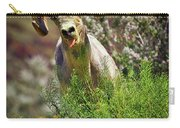 Bighorn Sheep And Wildflowers In Anza Borrego Desert State Park Carry-all Pouch by Sam Antonio Photography