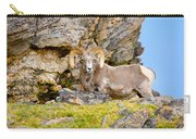 Bighorn Sheep Carry-all Pouch