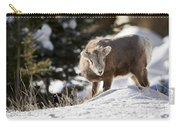 Bighorned Yearling - King Of The Hill Carry-all Pouch