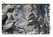 Bighorns Romantic Stare Carry-all Pouch
