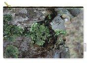 Birch Bark 1 Carry-all Pouch