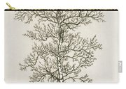 Birch Tree Carry-all Pouch by Charles Harden