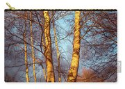 Birch Tree In Golden Hour Carry-all Pouch