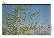 Birch Tree Over Lake Carry-all Pouch