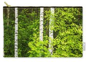 Birch Tree Panorama Carry-all Pouch