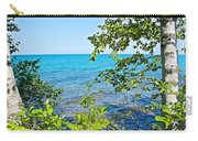 Birch Trees Above Lake Superior Off North Country Trail In Pictured Rocks National Lakeshore-mi Carry-all Pouch