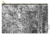 Birch Trees1 Carry-all Pouch