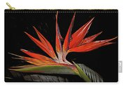 Bird In Flight Vivid Colors Carry-all Pouch