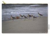 Bird Walk Carry-all Pouch