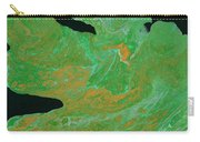 Birdsong Lights The Night Carry-all Pouch