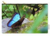 Black And Blue Butterfly Carry-all Pouch by Raphael Lopez