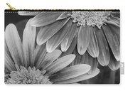 Black And White Gerber Daisies 2 Carry-all Pouch