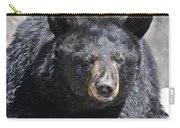 Black Bear 1 Carry-all Pouch