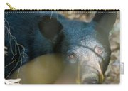 Black Bear Oh My Carry-all Pouch