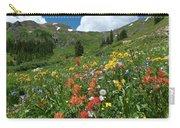 Black Bear Pass Landscape Carry-all Pouch
