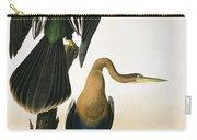 Black Billed Darter Carry-all Pouch by John James Audubon