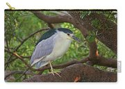 Black-crowned Night Heron 2 Carry-all Pouch