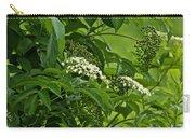 Black Elderberry - Sambucus Nigra_0261black Elderberry - Sambucus Nigra Carry-all Pouch