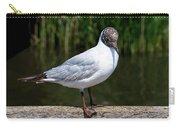 Black-headed Gull - Larus Ridibundus Carry-all Pouch