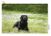 Black Lab Laying In A Field Carry-all Pouch