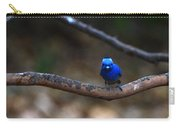 Black-napped Monarch Carry-all Pouch