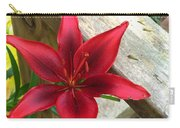 Black Center Day Lily  Carry-all Pouch